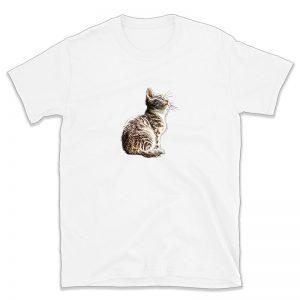 Rainas kačiukas